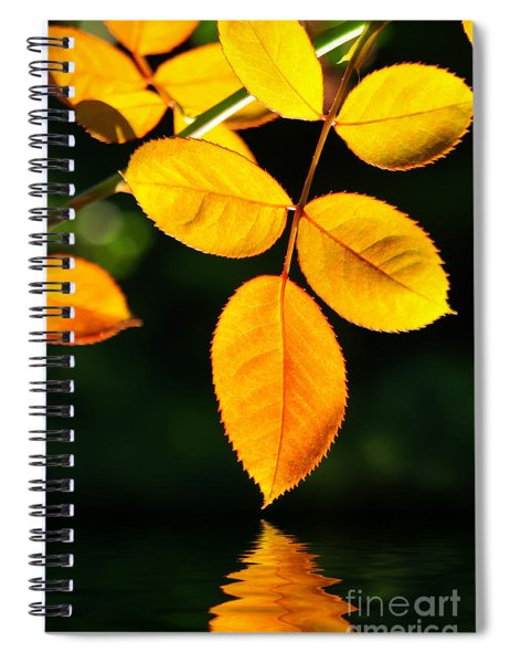 Leafs Over Water Spiral Notebook