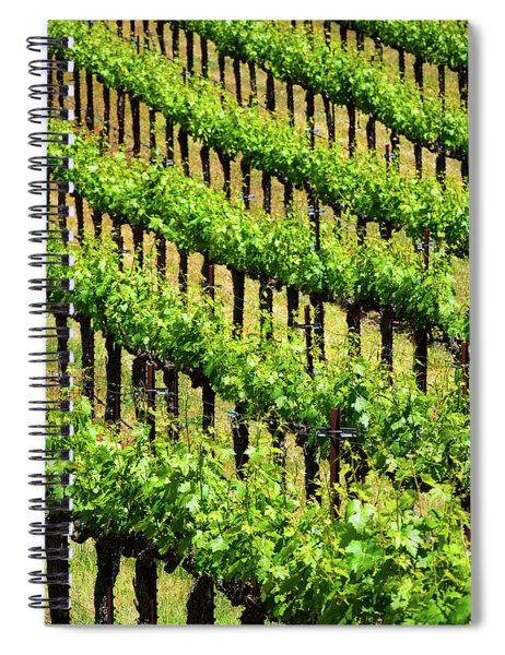 League Spiral Notebook by Skip Hunt