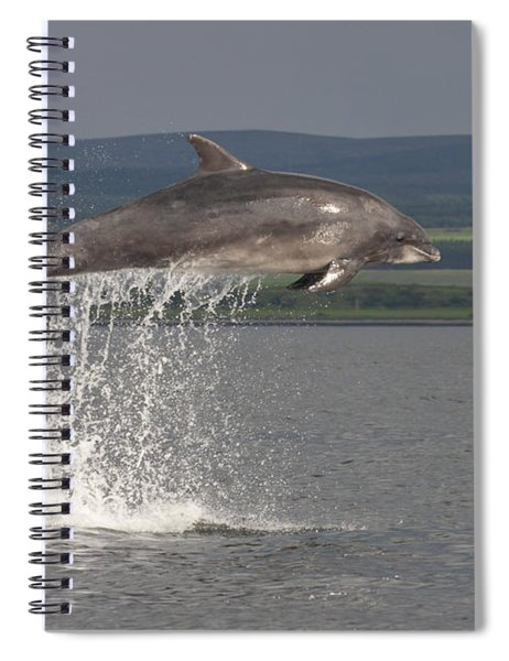 Leaping Bottlenose Dolphin  - Scotland #39 Spiral Notebook