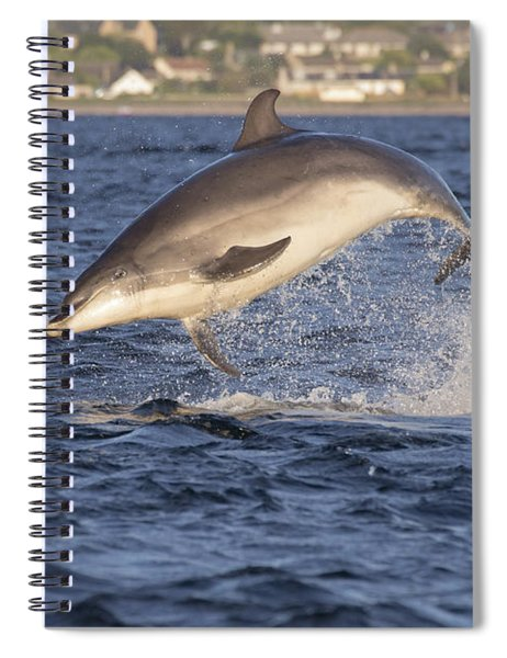Jolly Jumper - Bottlenose Dolphin #40 Spiral Notebook