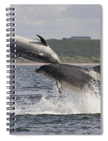 Leaping Bottlenose Dolphins - Scotland  #38 Spiral Notebook
