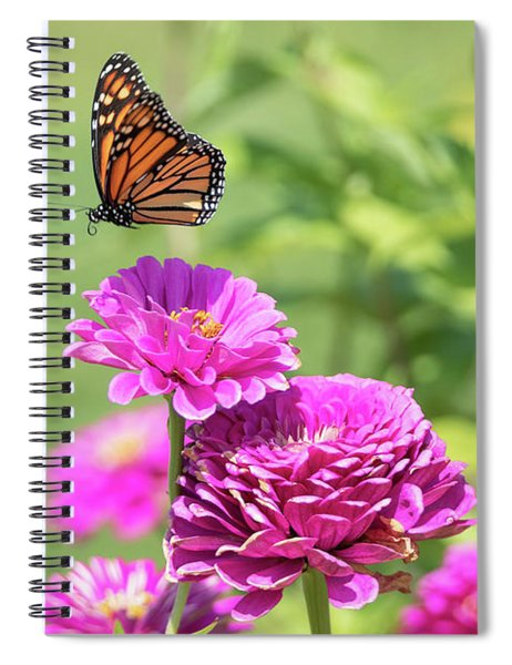 Leaping Butterfly Spiral Notebook