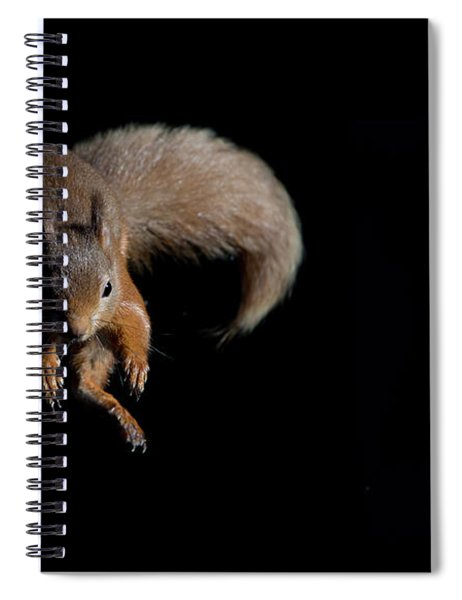 Leaping Out Of The Shadows Spiral Notebook