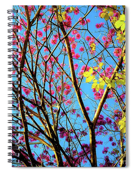 Leaves And Trees 980 Spiral Notebook