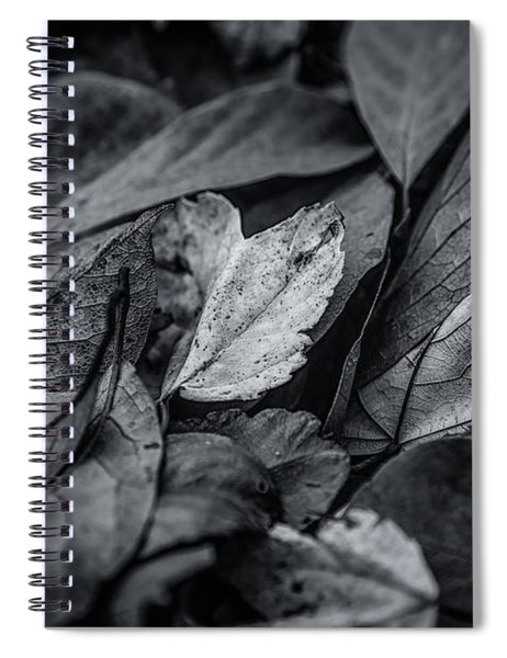 Leaves In Darkness Spiral Notebook