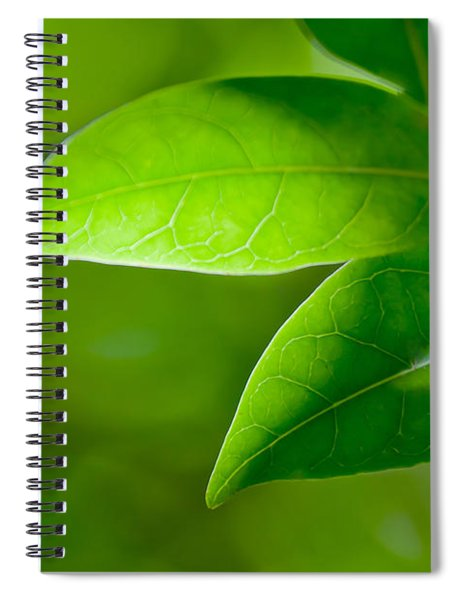 Leaves Of Green Spiral Notebook