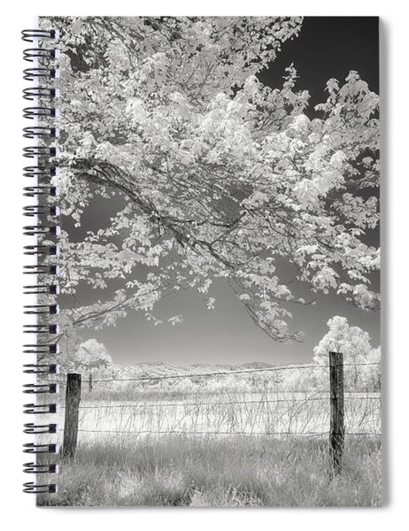 Leaves Of Spring Spiral Notebook