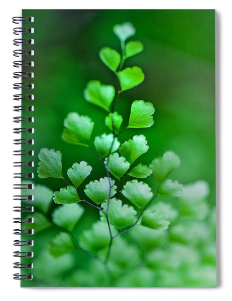 Leaves Rising Spiral Notebook