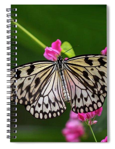 Leisurely Lunch Spiral Notebook