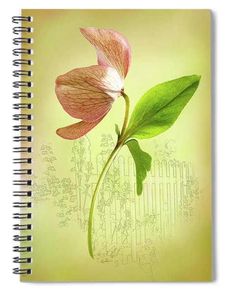 Lenton Rose 1 Spiral Notebook