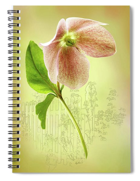Lenton Rose 2 Spiral Notebook