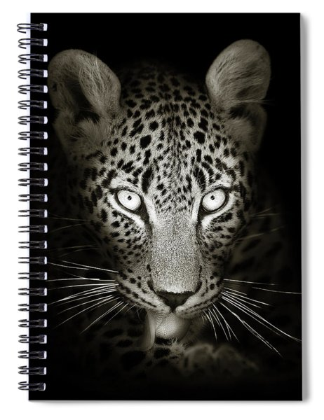 Leopard Portrait In The Dark Spiral Notebook
