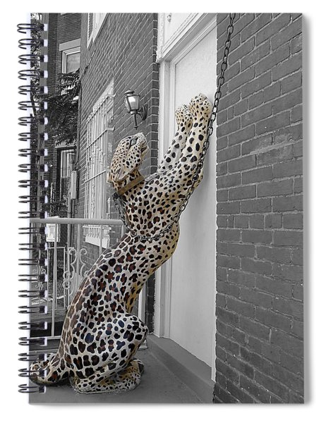 Let The Cat In Spiral Notebook