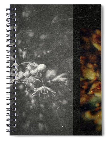 Let The Wind Go Spiral Notebook