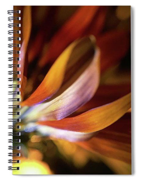 Let Your Freak Flag Fly Spiral Notebook