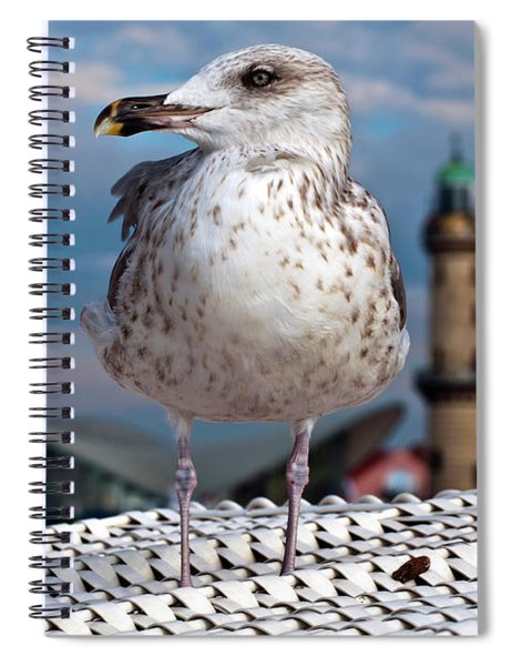 Liberty Of An Pacific Gull Spiral Notebook