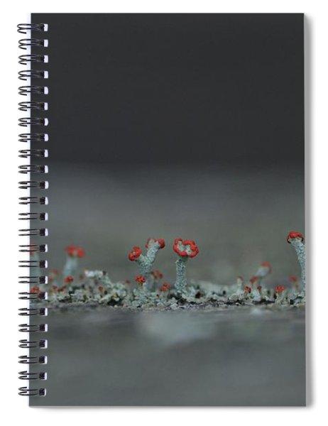 Lichen-scape Spiral Notebook