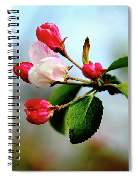 Life Anew - Grow With It Spiral Notebook