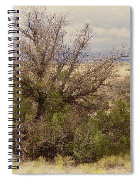Life Of A High Desert Juniper Pinyon Spiral Notebook