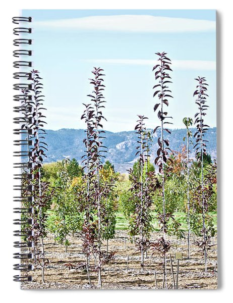 Life On A Tree Farm-foothills View #1 Spiral Notebook