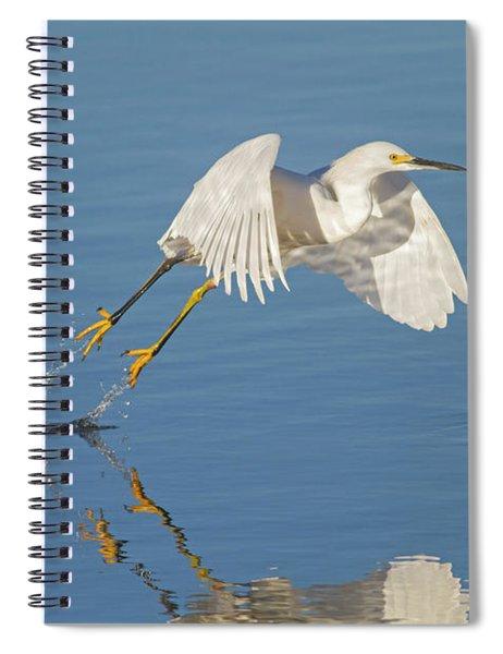 Lift Off- Snowy Egret Spiral Notebook