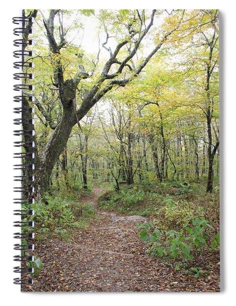 Light On Path Spiral Notebook