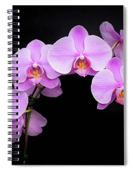 Light On The Purple Please Spiral Notebook