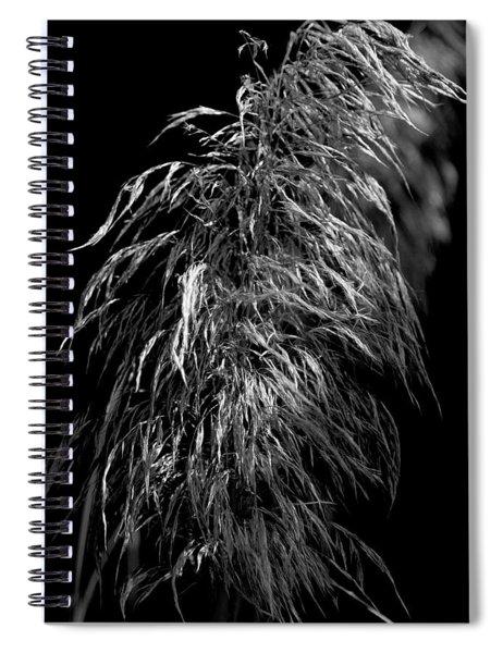 Light Shadows Spiral Notebook