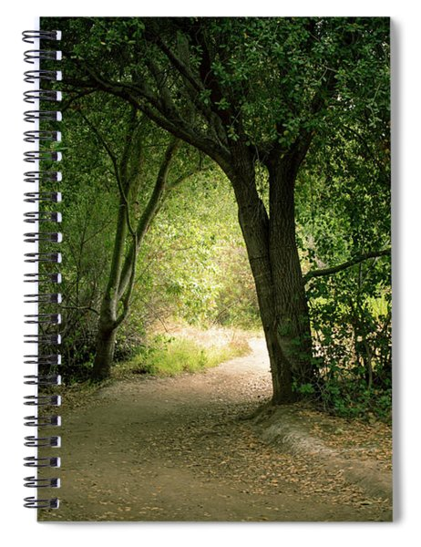 Spiral Notebook featuring the photograph Light Through The Tree Tunnel by Alison Frank