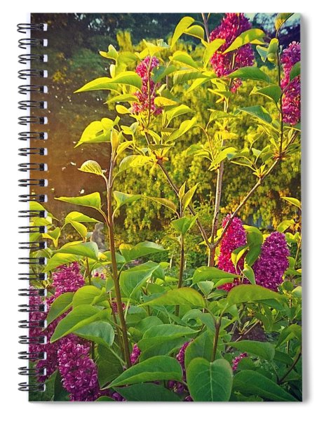 Lilac Tree Spiral Notebook