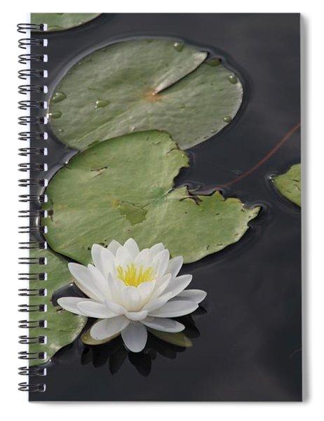Buddhist Symbol  Spiral Notebook