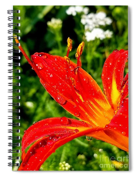 Lily And Raindrops Spiral Notebook