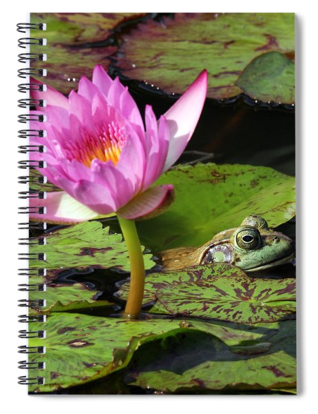 Lily And The Bullfrog Spiral Notebook