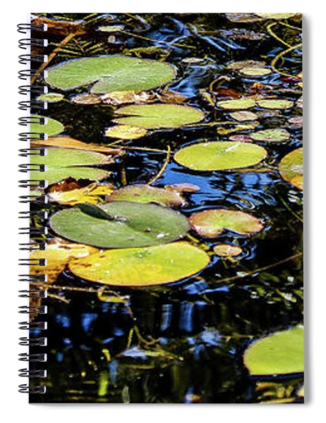 Lily Pads Spiral Notebook
