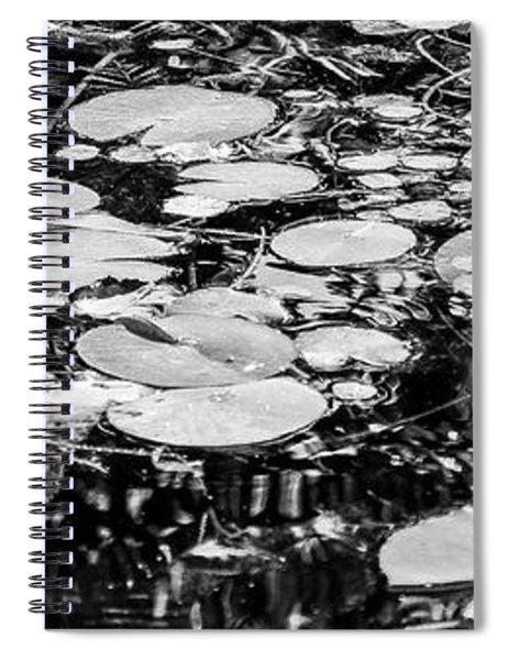 Lily Pads, Black And White Spiral Notebook