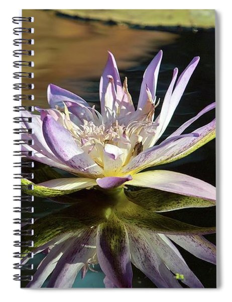 Lily Reflections Spiral Notebook