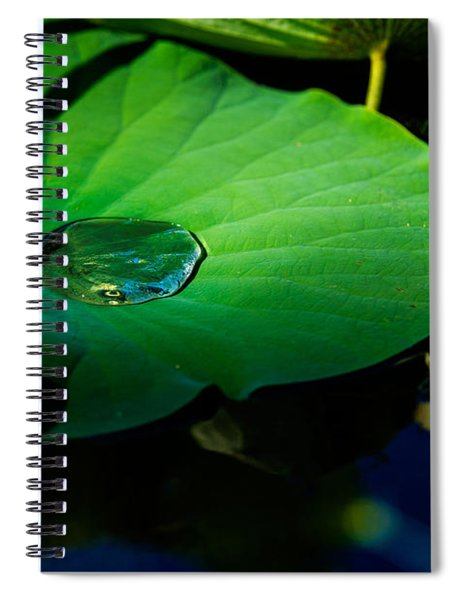 Lily Water Spiral Notebook