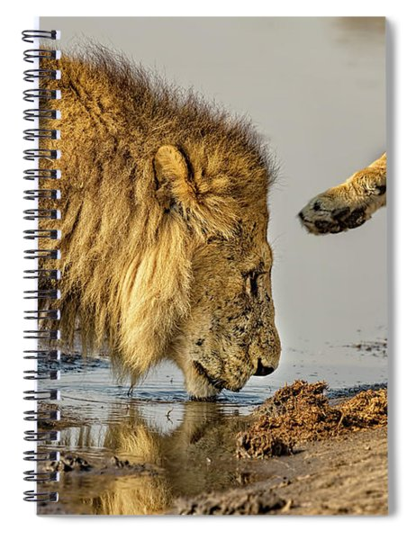 Lion Affection Spiral Notebook