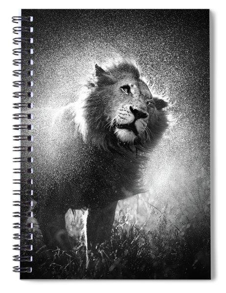 Lion Shaking Off Water Spiral Notebook