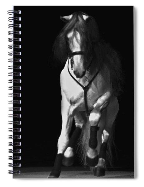 Lipizzan 1 Spiral Notebook