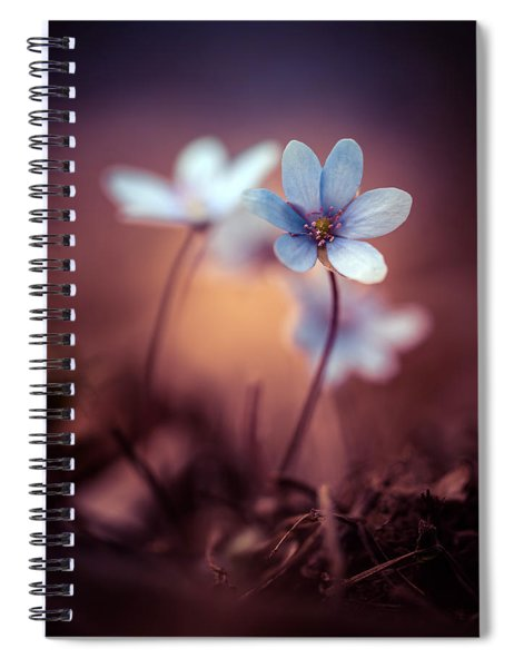 Liverworts Spiral Notebook
