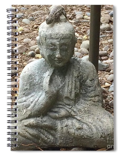 Lizard Zen Spiral Notebook
