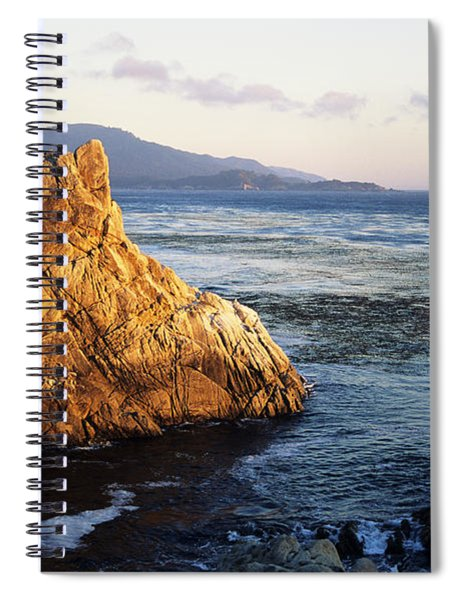 Lone Cypress Tree Spiral Notebook