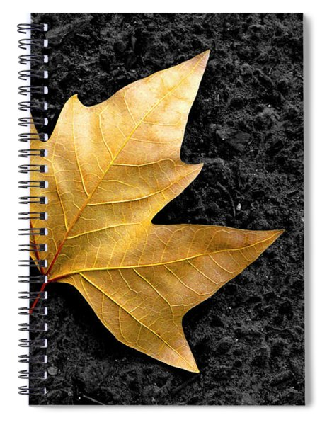 Lone Leaf Spiral Notebook
