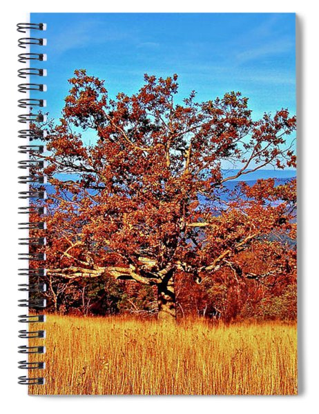 Lone Mountain Tree Spiral Notebook
