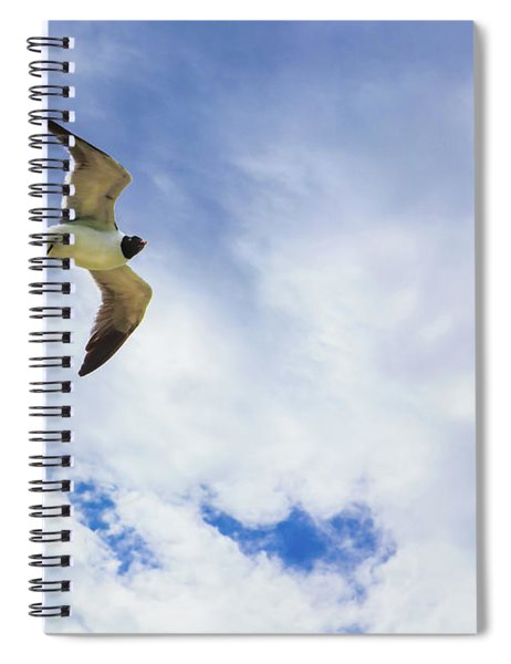 Lone Seagull Glides Against Cloudy Sky Spiral Notebook