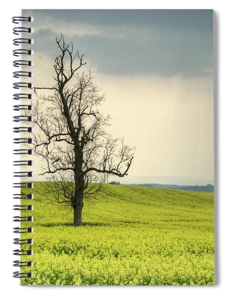 Lone Tree In Rape Field 2 Spiral Notebook