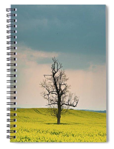 Lone Tree In Rape Field 3 Spiral Notebook