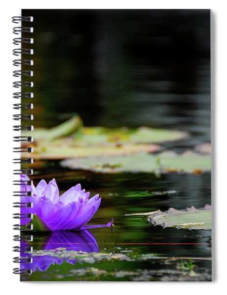 Lone Water Lilly Spiral Notebook
