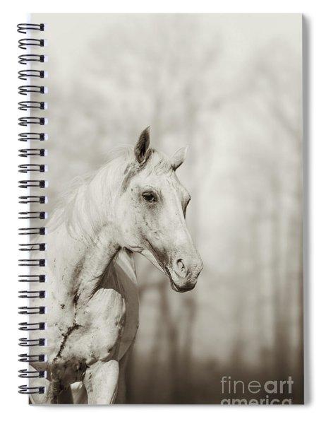 Lone White Wild Horse II Spiral Notebook